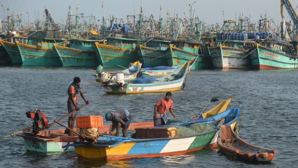Fishing is a crucial source of income in the coastal towns and villages of Tamil Nadu state in southern India (Credit: Getty Images)