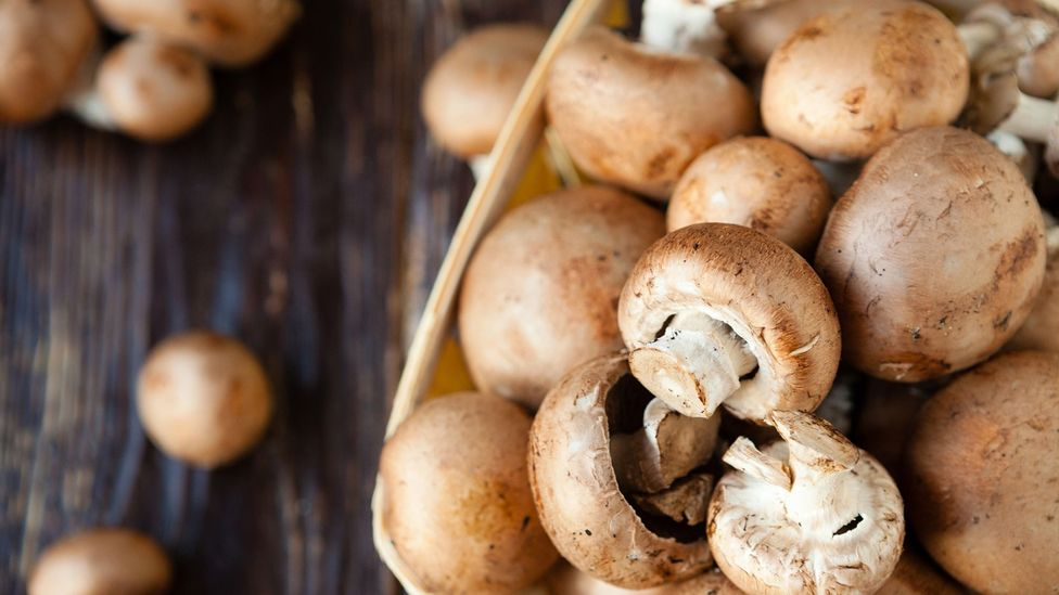 Much of the carbon footprint of mushrooms comes from the heat needed to grow them indoors (Credit: Getty Images)