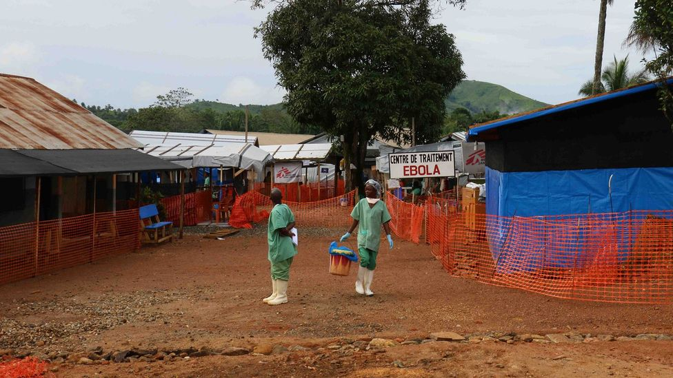The Ebola outbreak that swept across West Africa has been traced to a young boy from Guinea who is thought to have caught the virus from bats (Credit: Getty Images)