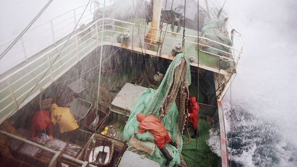 The fishermen were separated from land by three miles of frigid sea (Credit: Getty Images)