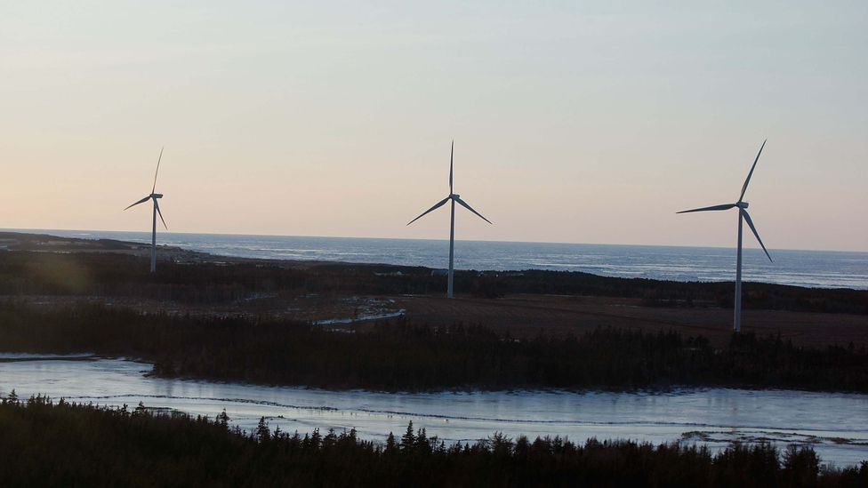 Growing wind farms like this one on Prince Edward Island can provide valuable renewable energy, but pose a problem for wildlife (Credit: Getty Images)