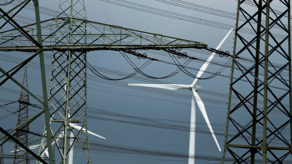 Large infrastructure like power lines and wind turbines alter the profile of the local ecosystem - sometimes shifting the entire food web in the vicinity (Credit: Getty Images)