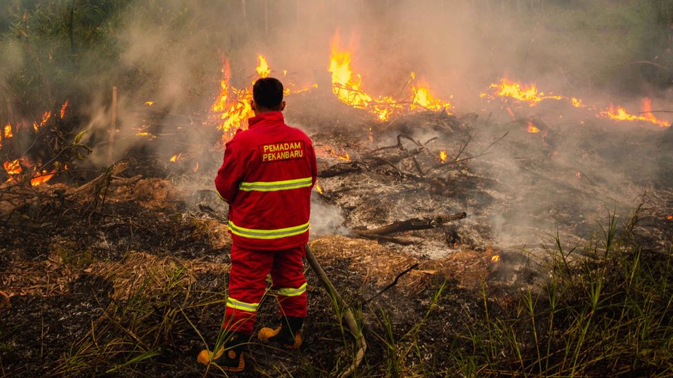 An Indonesian firefighter battles flames in a wildfire (Credit: Getty Images)