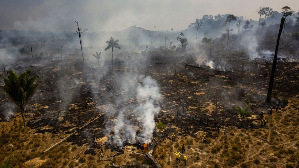 Scientists have found that flu cases in Brazil tend to go up during the burning season, when smoke dilutes UV (Credit: Getty Images)