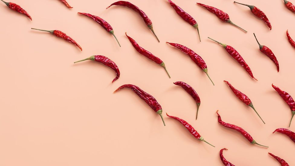 Capsaicin, the main active ingredient in chillies, may improve blood cholesterol levels and inflammation (Credit: Getty Images)