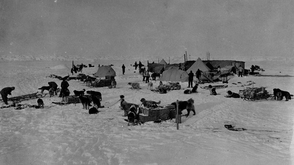 To prevent despair from some team members affecting their colleagues, explorer Ernest Shackleton 'quarantined' them in his tent to uphold morale (Credit: Getty Images)