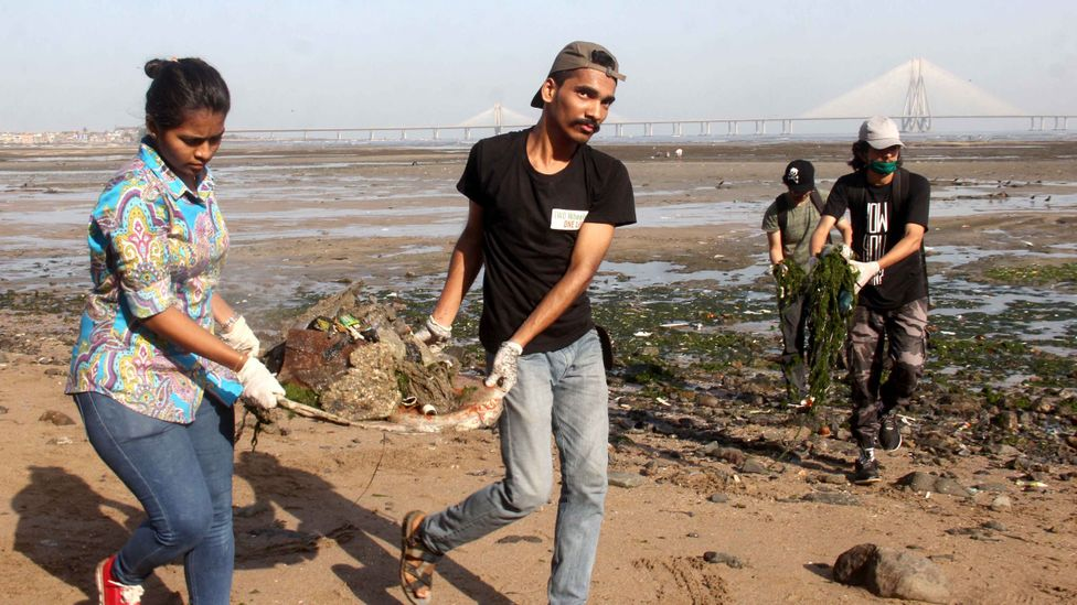 Earth Day has adapted to its surroundings in many countries, from dolphin-themed activities in Hawaii to thorough beach-cleans in Mumbai (Credit: Getty Images)