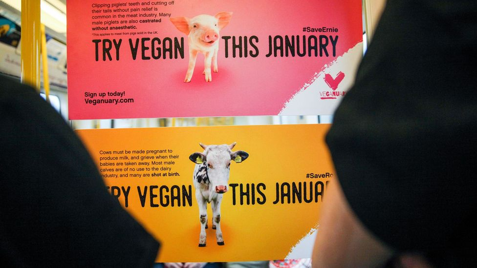 Veganism is booming at the moment, with a record number of people signing up for this year's Veganuary initiative