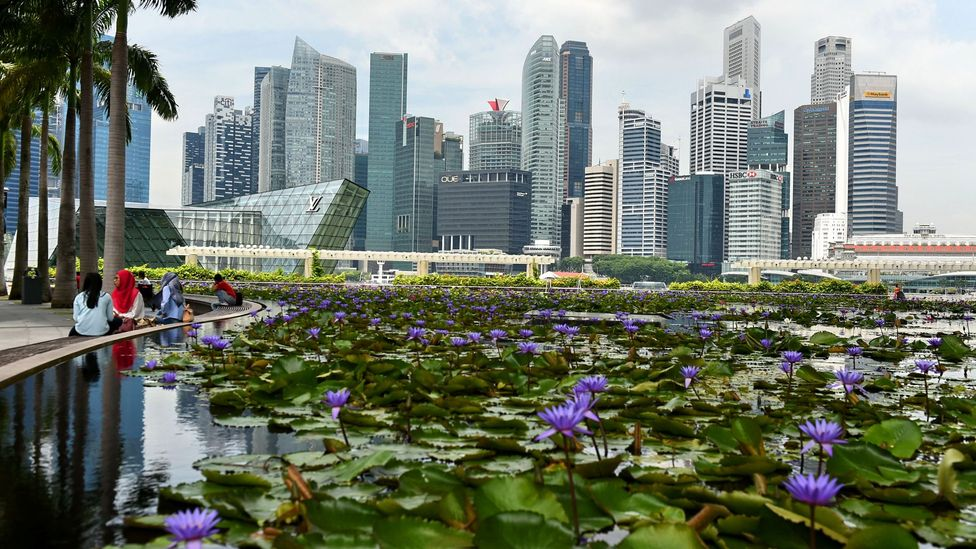 Therapeutic parks in Singapore are designed to boost the mental and emotional well-being of citizens (Credit: Getty Images)
