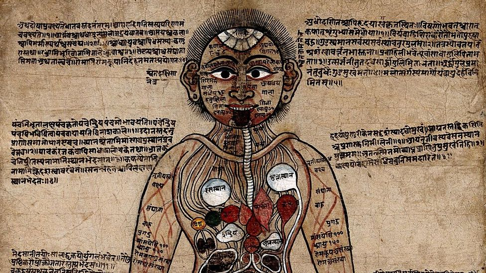 Ayurvedic medicine, which is thousands of years old, is just one form of medicine that recommends animal-derived treatments (Credit: Getty Images)