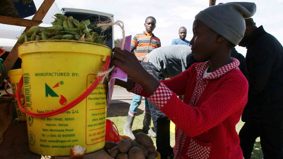 There is no effective physical protection for outdoor fresh produce in Kenya, so the solution for farmers is ensuring they are able to start again (Credit: David Njagi)