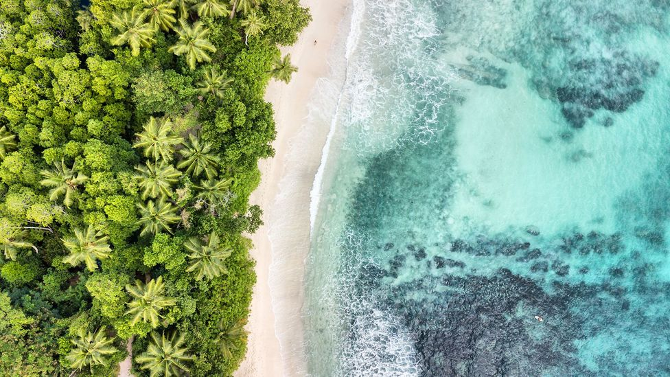 A Seychelles beach as seen from the sky (Credit: Getty Images)