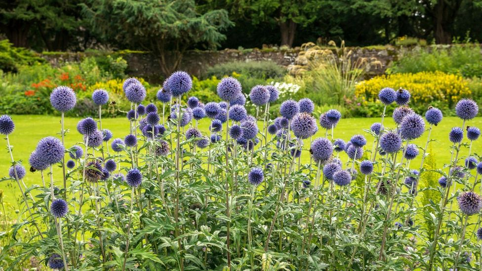 The Arts and Crafts movement looked to simpler times, finding inspiration in handicrafts and nature, like this Arts and Crafts flower bed at Dirleton Castle, Scotland