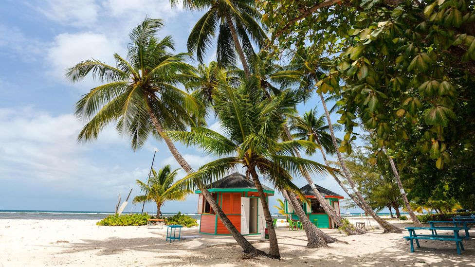 Beginning 24 July, Barbados implemented a Welcome Stamp plan to allow visitors to work from the Caribbean island for 12 months (Credit: Alamy)