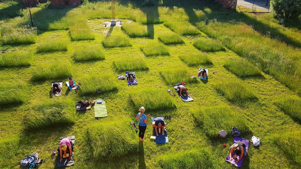 Architect Ada Kotyńska of art gallery Galeria EL in Elblag, Poland, mowed the gallery's garden into a checkerboard pattern to promote distancing (Credit: Lukasz Kotynski)