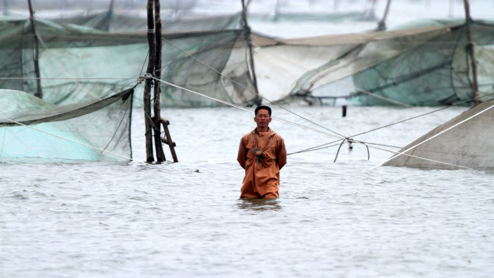 The overfishing of waters close to North Korea are thought to be the reason that boats containing the bodies of fishermen washed up on the shores of Japan (Credit: Getty Images)