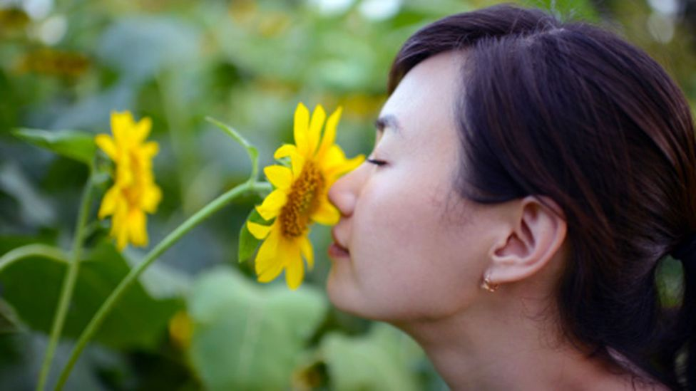 Smells can be strongly linked to memories, and there are suggestions this could be linked to hyperosmia (Credit: Getty Images)