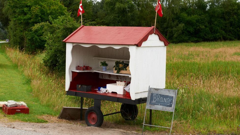 Farms sell their produce at unattended roadside stalls, using honesty boxes to collect payment (Credit: Brian Bjeldbak/Alamy)
