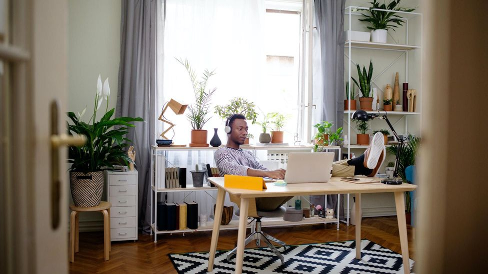 How 'biophilic' design can create a better workspace