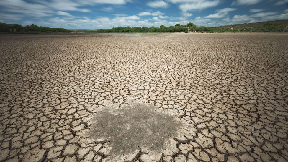Water scarcity is predicted to become more common due to climate change (Credit: Alamy)