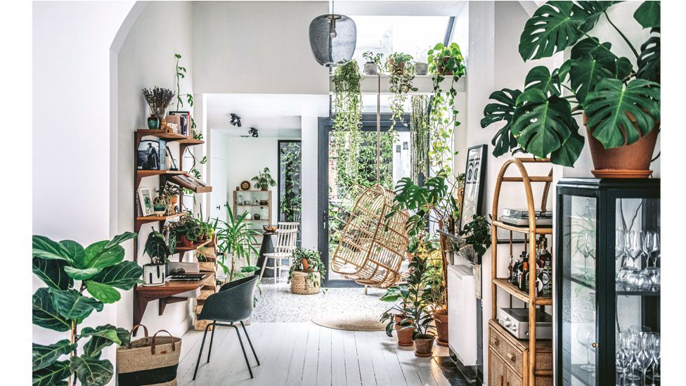 This plant-filled home in Antwerp is among those featured in the book Wild Interiors (Credit: Hilton Carter/ CICO Books)