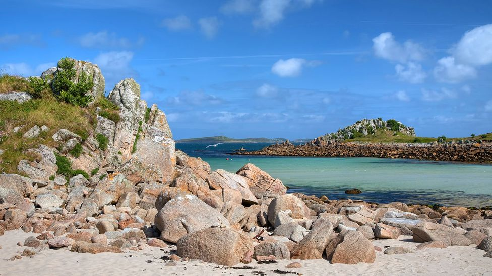 Once one of the poorest places in Britain, Tresco Island was the first place to adopt universal schooling for children in England (Credit: Andy Roland/Getty Images)
