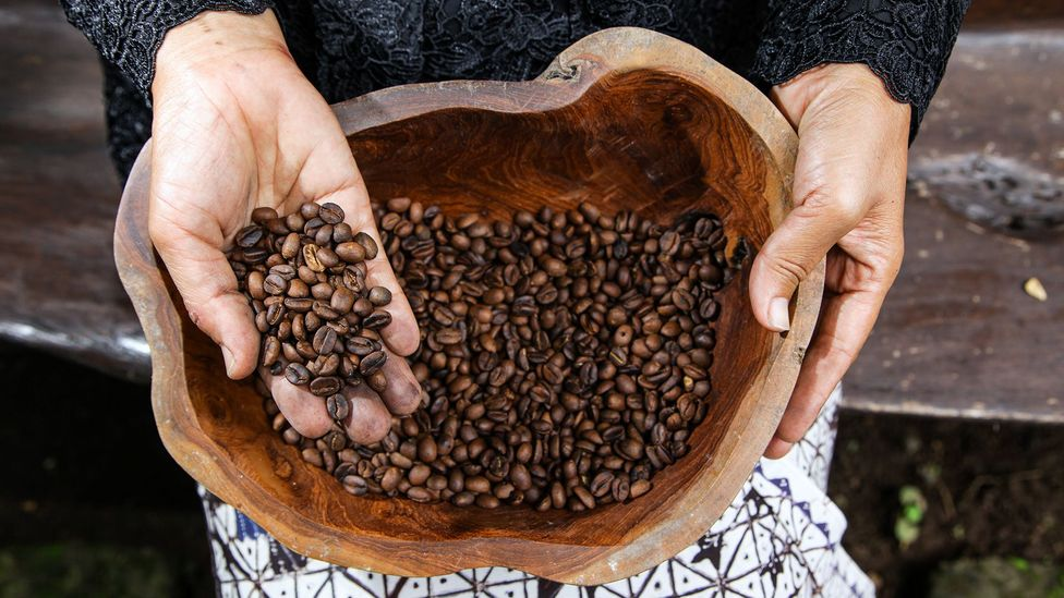Both decaffeinated and caffeinated coffee have similar amounts of antioxidants (Credit: Getty Images)