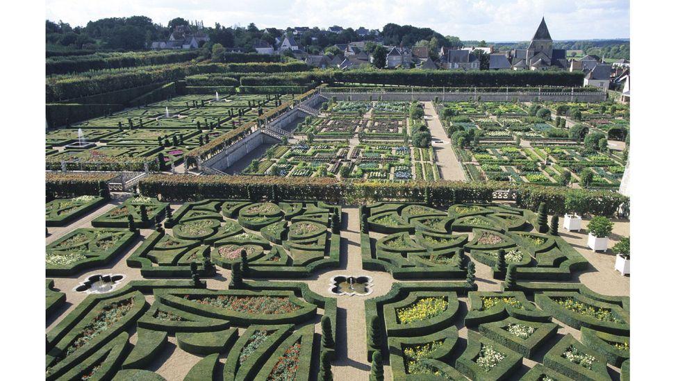 Chateau de Villandry, Indre-et-Loire, Fransa'daki labirent (Kredi: Getty Images)