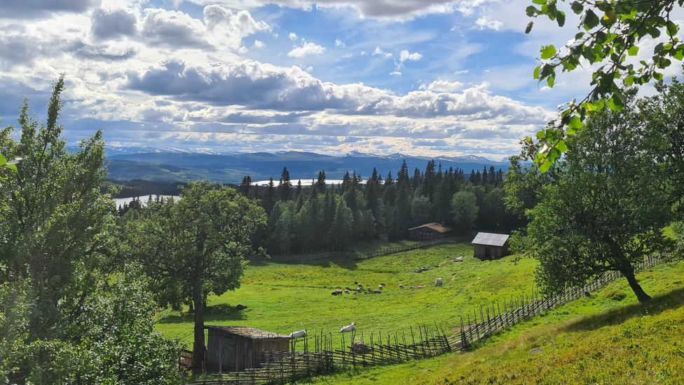 Summer farms like Skallskog are inextricably linked to the ancient Swedish singing tradition of kulning (Credit: Justin Calderón)