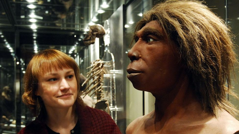 Both male and female Neanderthals appear to have interbred with our own species according to the genetic record (Credit: Lambert/Ullstein Bild/Getty Images)