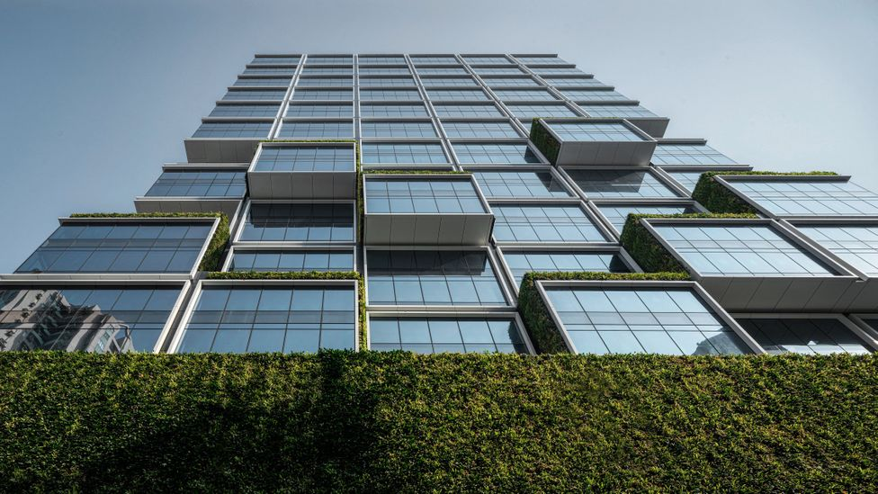 Changes to individual buildings can cut emissions, but decarbonising the city's energy grid would have more widespread impact (Credit: New World Development Company)