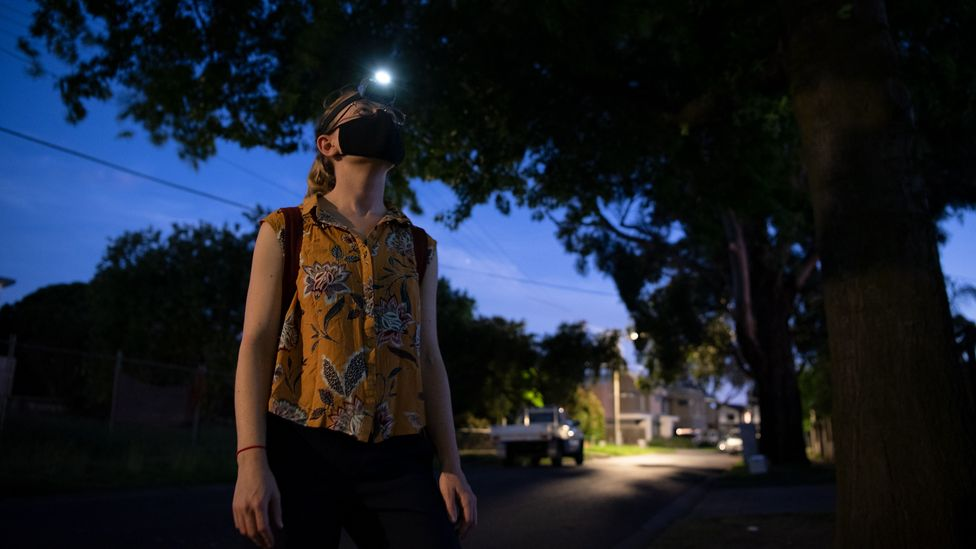 Saras Windecker is conducting nocturnal surveys to estimate how many possums live in neighbourhoods around Melbourne (Credit: Annette Ruzicka)