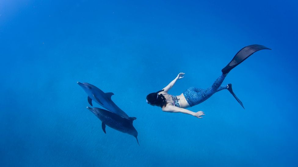 Prinsloo has broken 11 South African freediving records and can hold her breath for six minutes (Credit: Peter Marshall)