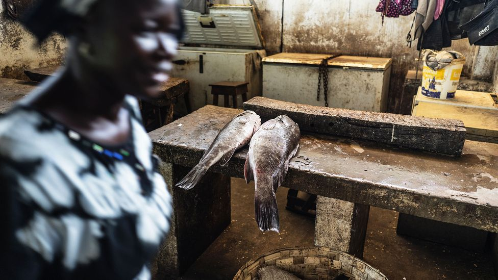 Woman in Gambian fish market (Credit: Getty Images)