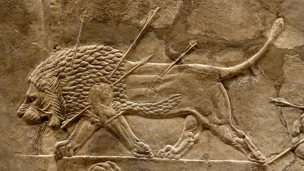 The reliefs show both the ferocity of the lions – and how the king was able to vanquish them (Credit: Alamy)