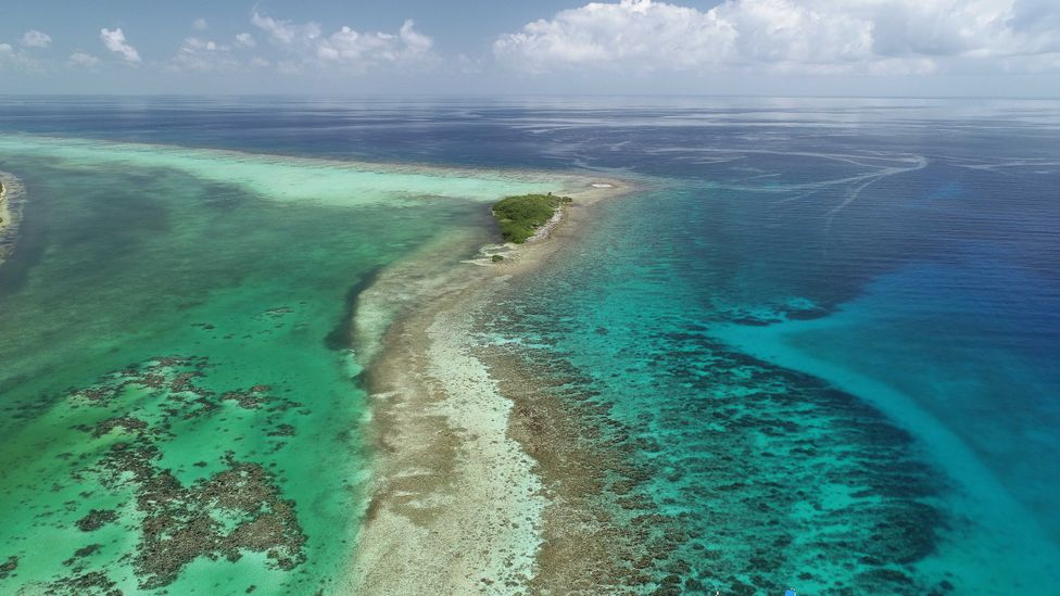 Shallow reefs around islands like those off the coast of Belize help to protect the coast from erosion, as well as supporting rich marine life (Credit: Fragments of Hope)