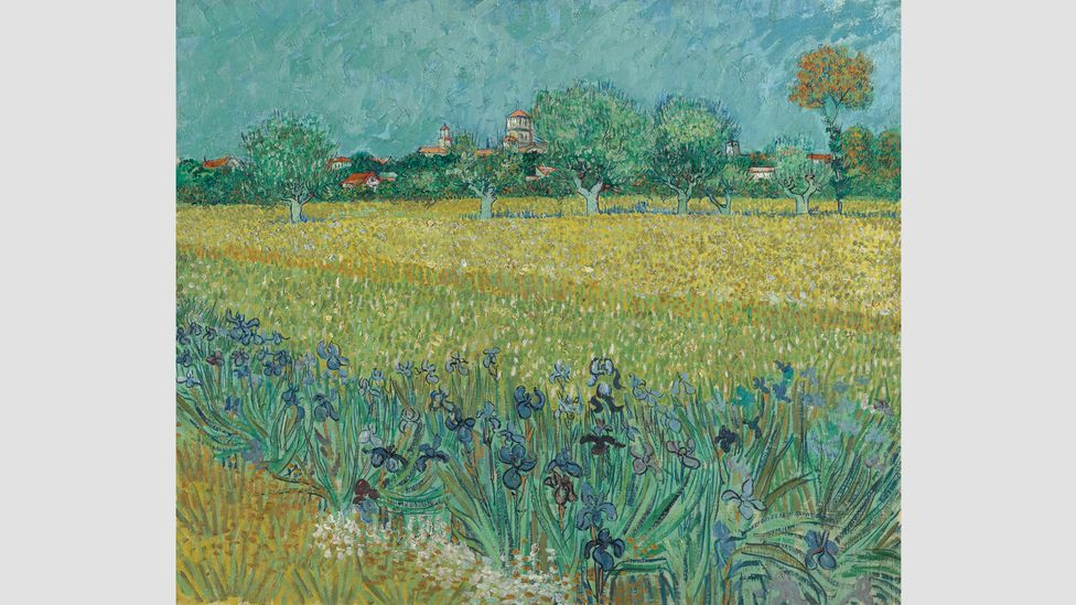 Field with Irises near Arles, 1888 – The Houston exhibition explores the two artists' love of nature and Van Gogh's influence on Hockney (Credit: Vincent van Gogh Foundation)