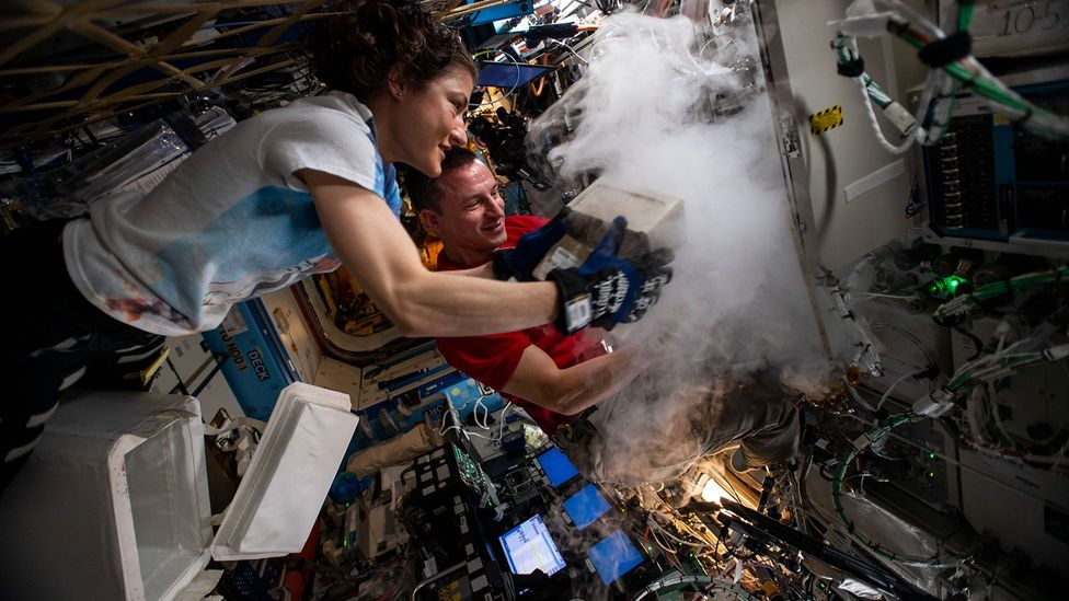While it is possible to 3D print living organs in space, handling biological material in space requires care and getting them back to Earth could prove expensive (Credit: Nasa)