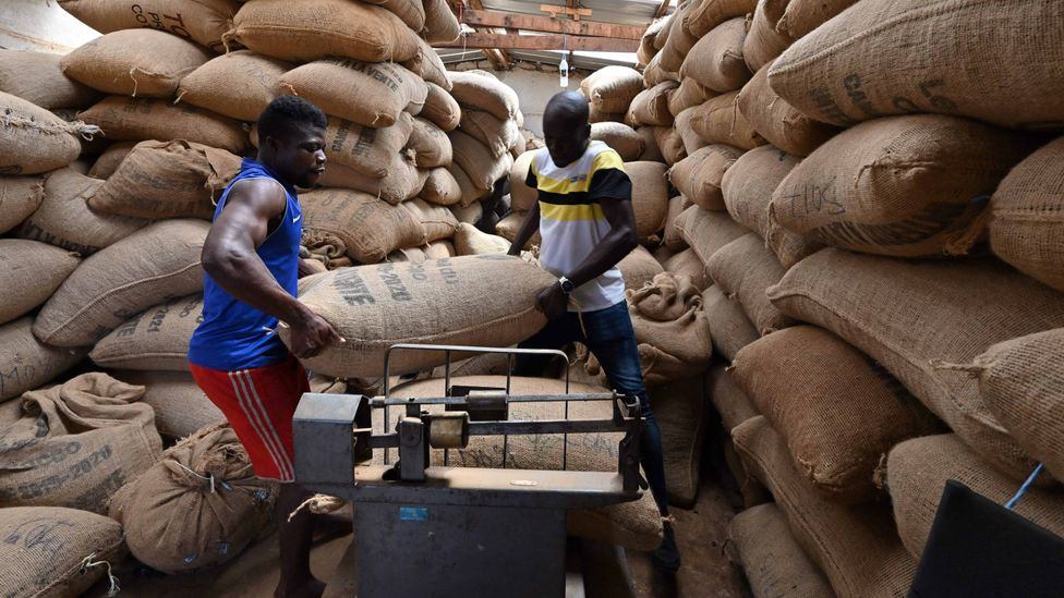 The large plant in Ivory Coast is the first of nine further facilities planned to make use of cocoa husks and other biomass (Credit: Getty Images)