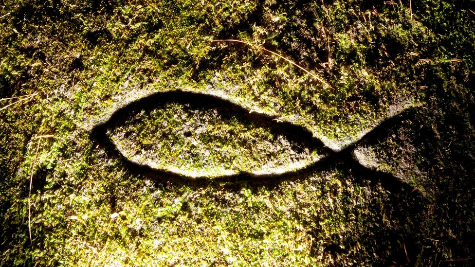 Made up of two intersecting arcs, the Ichthys symbol resembles the profile of a fish (Credit: Alamy)