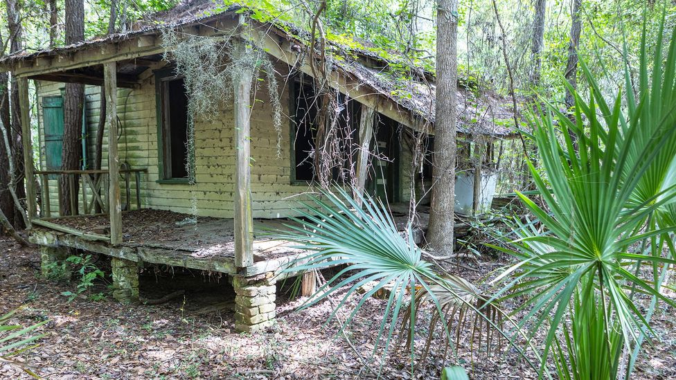 """""""The stories live in those homes, the community lives in the history,"""" said Robinson of Gullah cottages on the island (Credit: Butch Hirsch Photography)"""