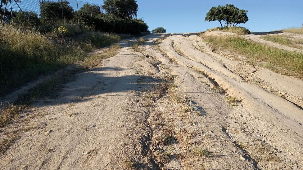 Drove roads around the country are in bad condition after decades of abandonment, encroachment and inappropriate vehicle use (Credit: Life Cañadas)