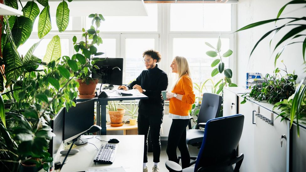 Workers will want something from the office that makes it better than working at home, whether that's environmental or social (Credit: Getty)