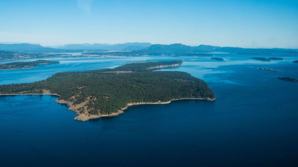 View of British Columbia coast, Canada