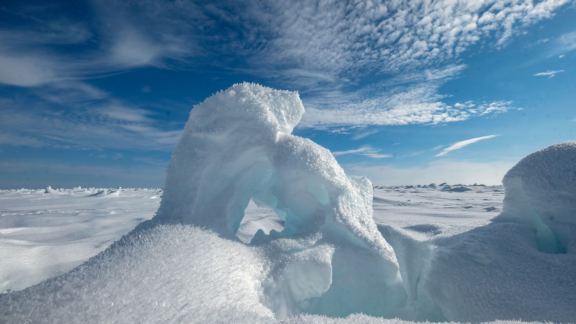 Arctic sea ice (Credit: Getty Images)