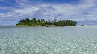 The Palmyra atoll was an uninhabited tropical paradise – until the rats arrived (Credit Island Conservation)