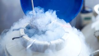 Eggs for IVF being stored in liquid nitrogen (Credit: Getty Images)