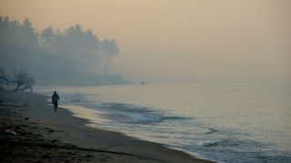 Across southern India, sandy beaches are facing severe erosion (Credit: Getty Images)