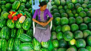 Woman sitting surrounded by watermelons (Credit: Gettty Images)
